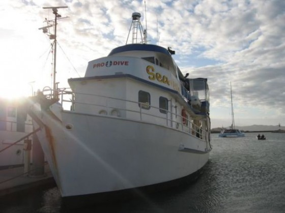 Das Tauchboot Sea Esta