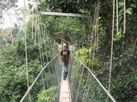 Ich auf einer Hängebrücke des Canopy Walk