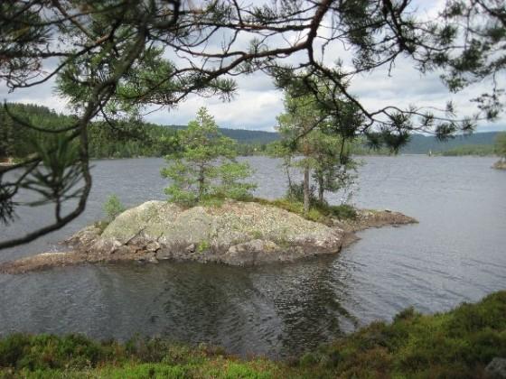 Der See Vegar mit seinen vielen kleinen Inseln