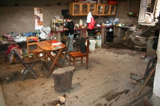Peruanische Küche mit Meerschweinchen auf dem Boden