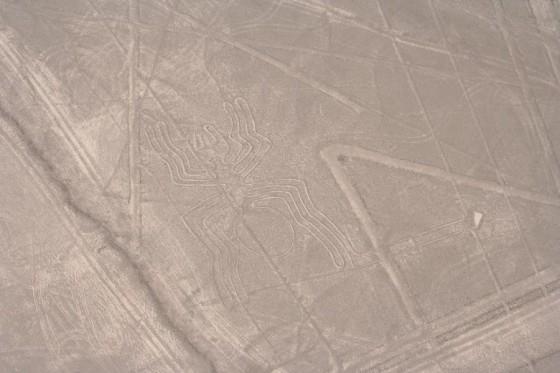 Nazca-Linien: Die Spinne
