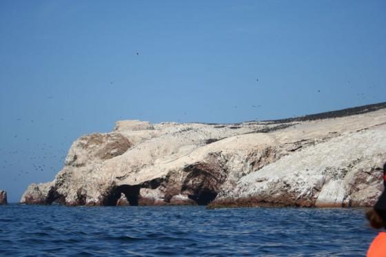 Islas Ballestas mit abertausenden von Vögeln