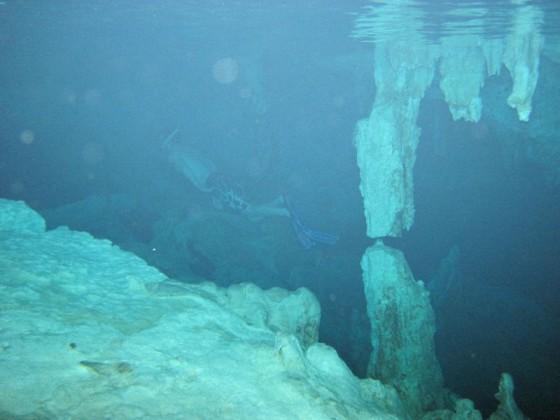 Tauchen in einer Cenote
